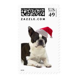 Santa Boston Terrier Postage Stamps