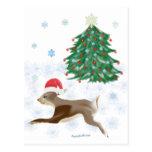 Santa Bunny Post Card