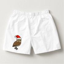 Santa Burrowing Owl Boxers