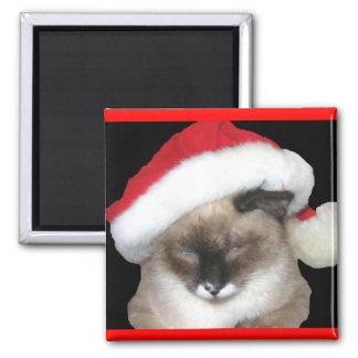 Santa Cat 2 Inch Square Magnet