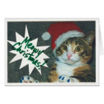 Santa Cat Cards