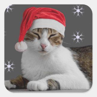 Santa Cat Stickers