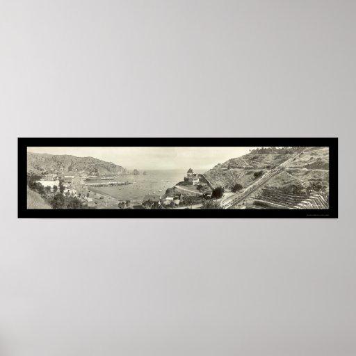Santa Catalina Island Photo 1914 Poster