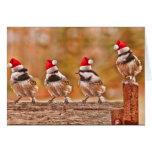 Santa Chickadees Cards