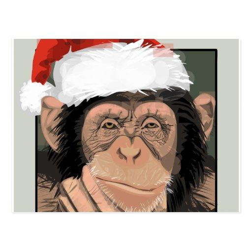 Santa Chimp Post Card