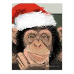 Santa Chimp Post Cards