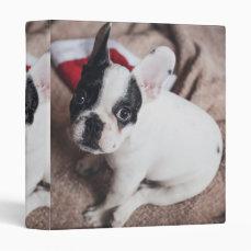 Santa claus dog -funny pug - dog claus binder