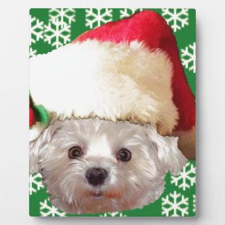 Santa Claus Dog Plaque