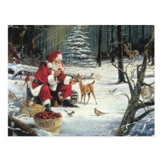 Santa Claus Feeding The Animals Postcard