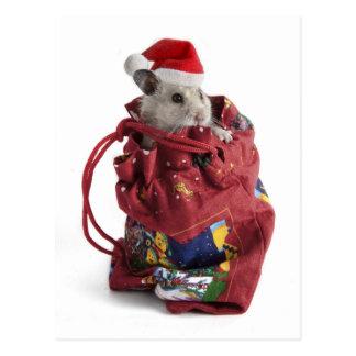 Santa Claus Hamster Postcard