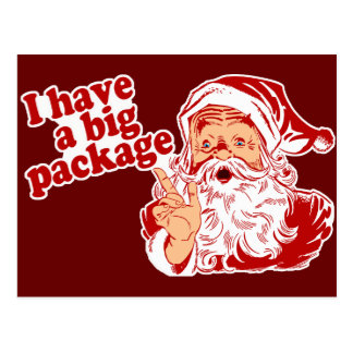 Santa Claus has a big package Post Cards