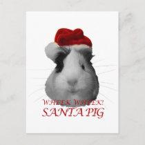 Santa Claus Pig Guinea Pig Christmas Holidays Holiday Postcard