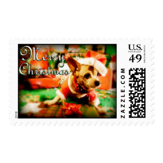 Santa Clause Chihuahua Merry Christmas Stamp