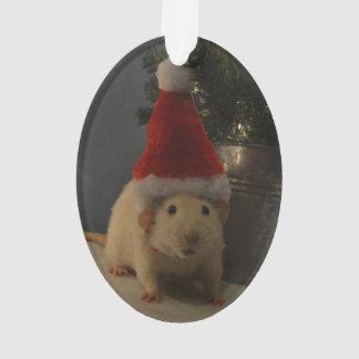 Santa Clause Dumbo Rat