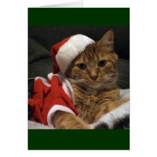 Santa Claws Card