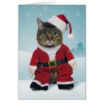 Santa Claws Christmas Card