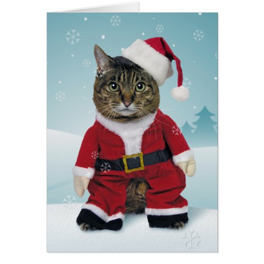 Santa Claws Christmas Card