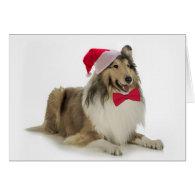 Santa Collie Christmas Cards