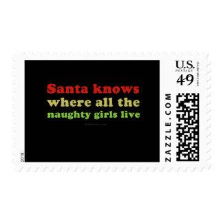 Santa conoce a todos los chicas traviesos envio