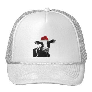 Santa Cow - Dairy Cow wearing Santa Hat
