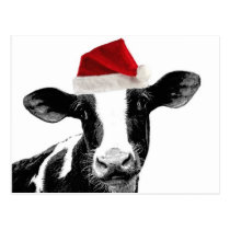 Santa Cow - Dairy Cow wearing Santa Hat Postcard