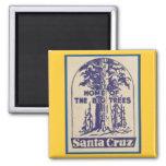 Santa Cruz Califonia - Home of the Big Trees 2 Inch Square Magnet