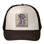 Santa Cruz California - casera de los árboles gran Gorra