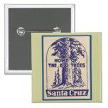 Santa Cruz California - casera de los árboles gran Pins