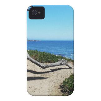 Santa Cruz Coast iPhone 4 Case-Mate Cases