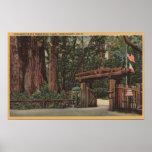 Santa Cruz County, CA Entrance to Big Trees Park Poster