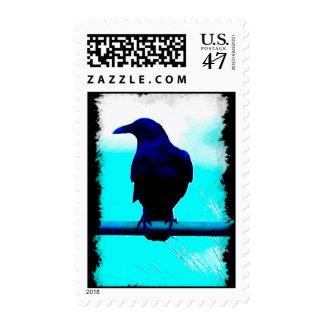 Santa Cruz Crow Postage Stamp