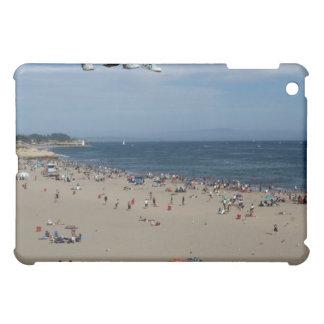 Santa Cruz iPad Mini Cover