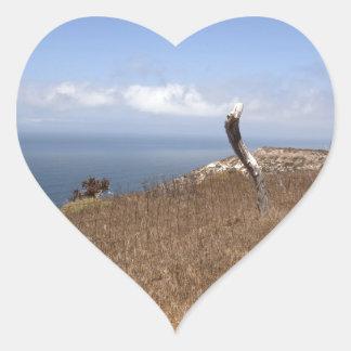 Santa Cruz Island Series 3 Heart Sticker