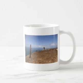 Santa Cruz Island Series 3 Mug