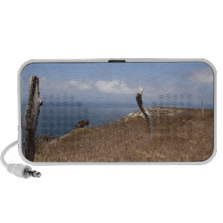 Santa Cruz Island Series 3 Notebook Speakers