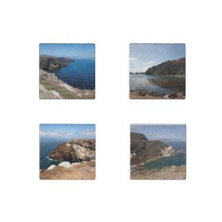 Santa Cruz Island Stone Magnet