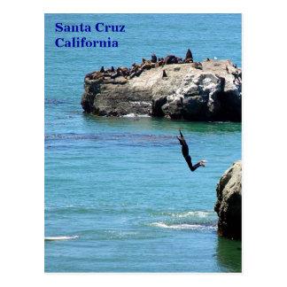 Santa Cruz Jumping Surfer - Postcard