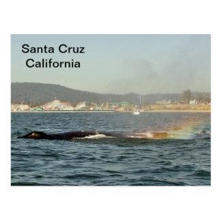 Santa Cruz, postal del arco iris de la ballena jor