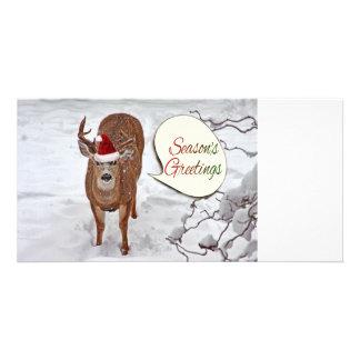 Santa Deer Photo Photo Greeting Card