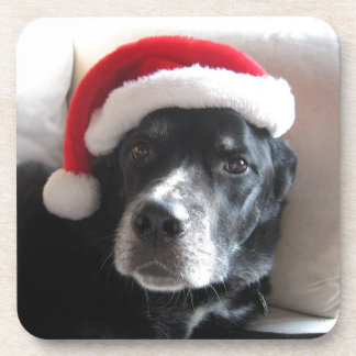 Santa Dog-Labrador Rottweiler Mix Beverage Coaster