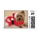 Santa Dog Postage