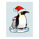 Santa Emperor Penguin Postcard