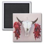 Santa Fe Cow Skull with Peppers Fridge Magnets