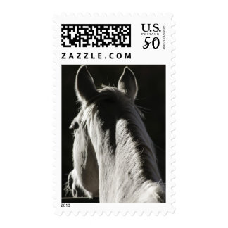 Santa Fe, New Mexico, United States 4 Postage