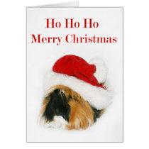Santa Guinea Pig Card