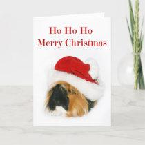 Santa Guinea Pig Holiday Card