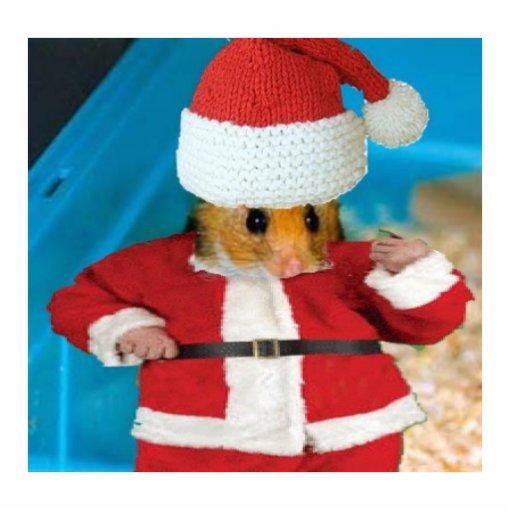 Santa Hamster Photo Sculpture