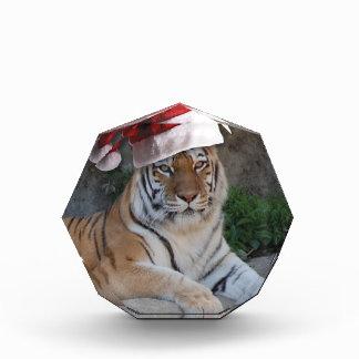 Santa Hat Bengal Tiger Awards