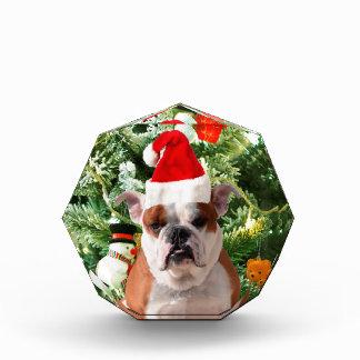 Santa Hat Bulldog Christmas Tree Snowman Gift Box