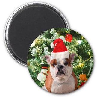 Santa Hat Bulldog Christmas Tree Snowman Gift Box Magnet